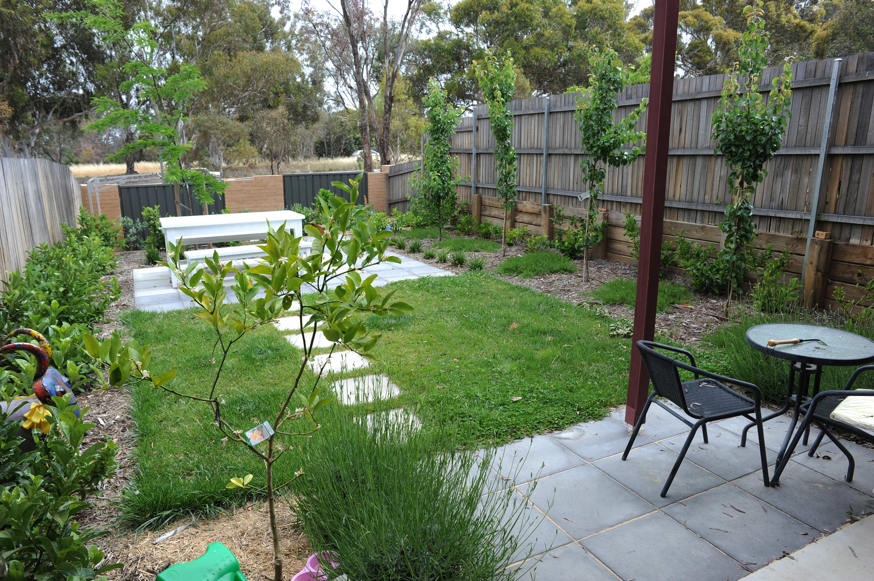 Tay Street, ACT. Paving, Turfing, Gardening and Retaining Wall 6